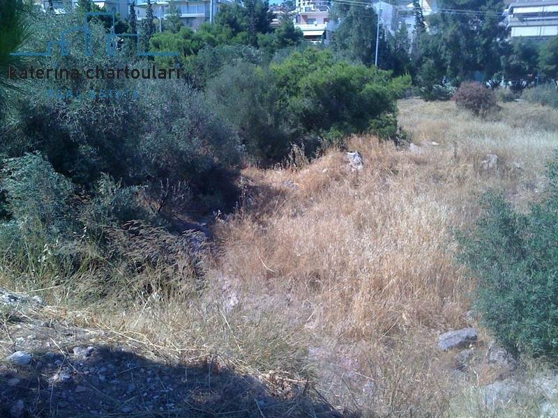 (For Sale) Land Agricultural Land  || Lakonia/Oitylo - 109.000 Sq.m, 700.000€